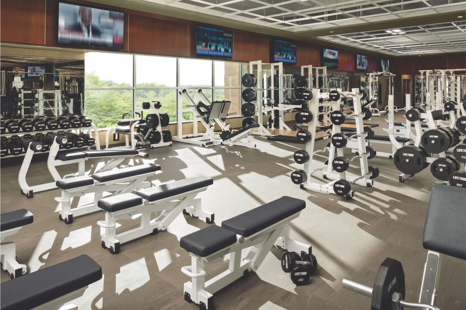 Alpha training area at Life Time with Olympic-style squat racks, barbells and mats